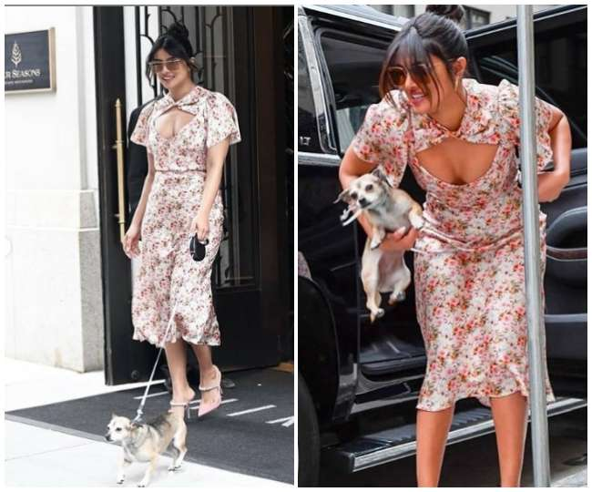Priyanka Chopra arrives at an event in New York with her pet dog, difficult to handle
