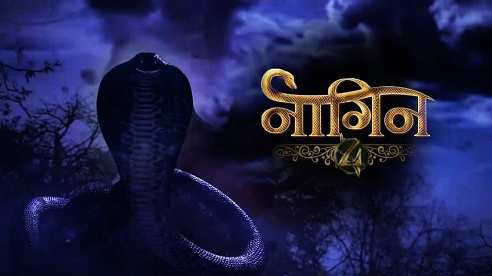 naagin-4-Written Updates