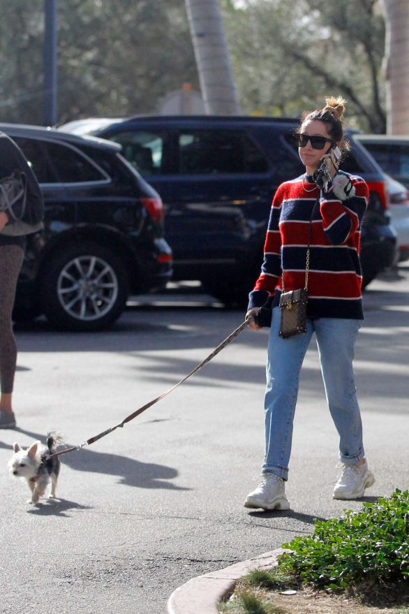 Ashley Tisdale Walk With Her Dog in Bel Air