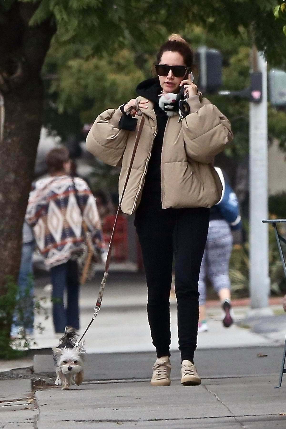 Ashley Tisdale takes her dog to pick up some food to go in Los Feliz, California