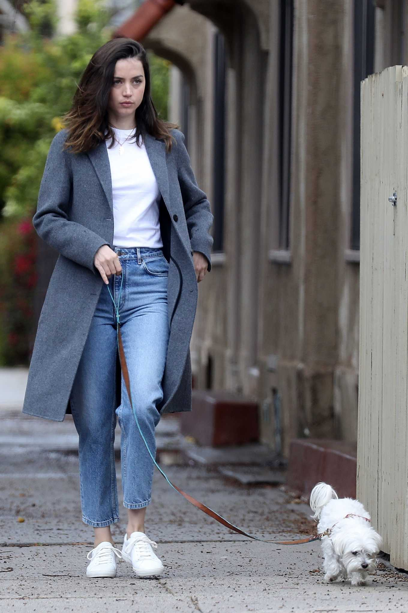 Ana De Armas Out with her cute dog in Los Angeles