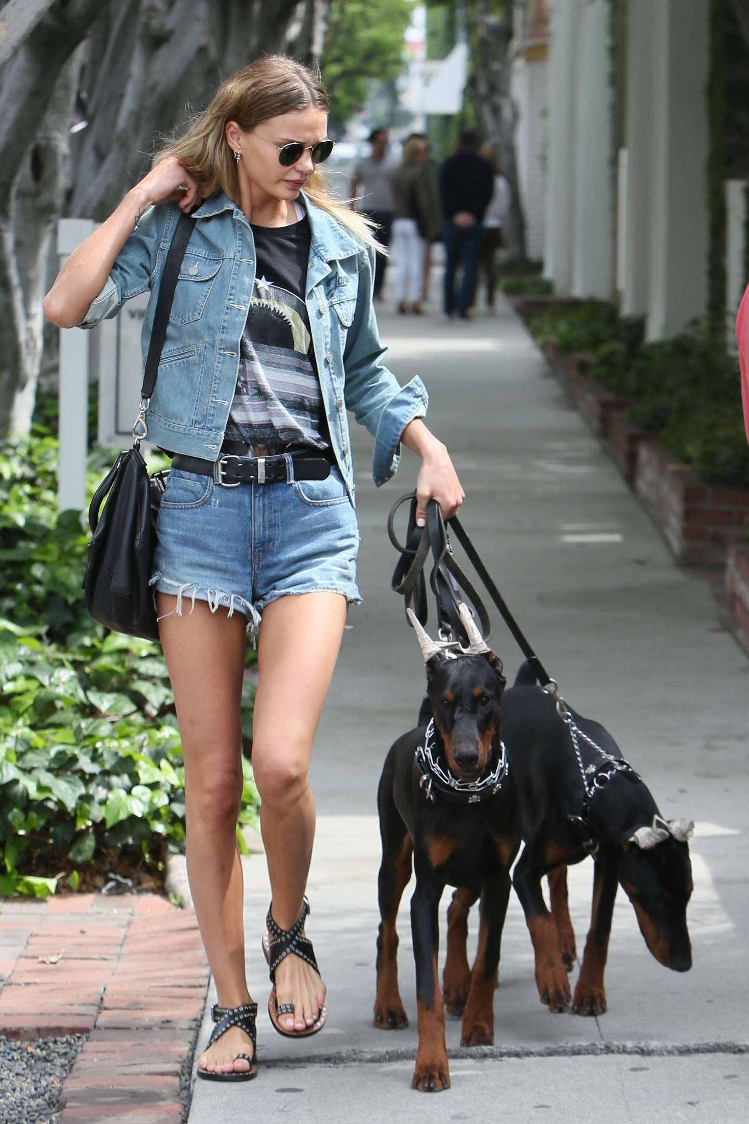 Isabella Lindbloom – Walks her dogs in West Hollywood-02
